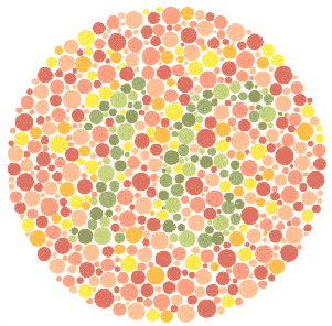What Colors Do You See?